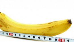 mesurer-votre-taille-de-penis
