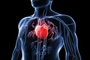 la-dysfonction-erectile-et-maladies-cardio-vasculaires