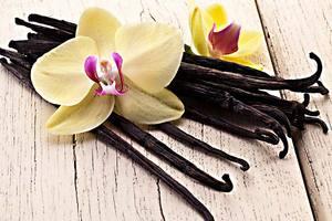aliments-aphrodisiaques-pour-ameliorer-la-libido-vanille